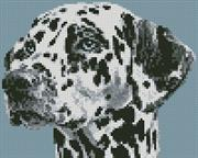 Dalmation Portrait (Kit - Chart, Fabric & Threads)