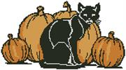 Cat And Pumpkins (Kit - Chart, Fabric & Threads)