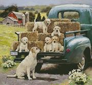 Green Truck Pups (Kit - Chart, Fabric & Threads)