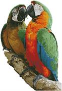 Macaws Photo (Kit - Chart, Fabric & Threads)