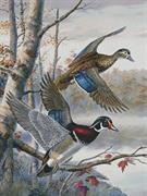 Lakeside Wood Ducks (Kit - Chart, Fabric & Threads)