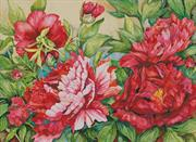 Peonies In Shades Of Red (Kit - Chart, Fabric & Threads)