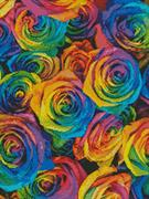 Rainbow Roses (Kit - Chart, Fabric & Threads)