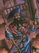 Pirate (Kit - Chart, Fabric & Threads)