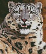 Snow Leopard Close Up (Kit - Chart, Fabric & Threads)