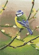 Blue Tit (Kit - Chart, Fabric & Threads)