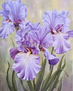 Mauve Irises (Kit - Chart, Fabric & Threads) - Lugana 25Ct.